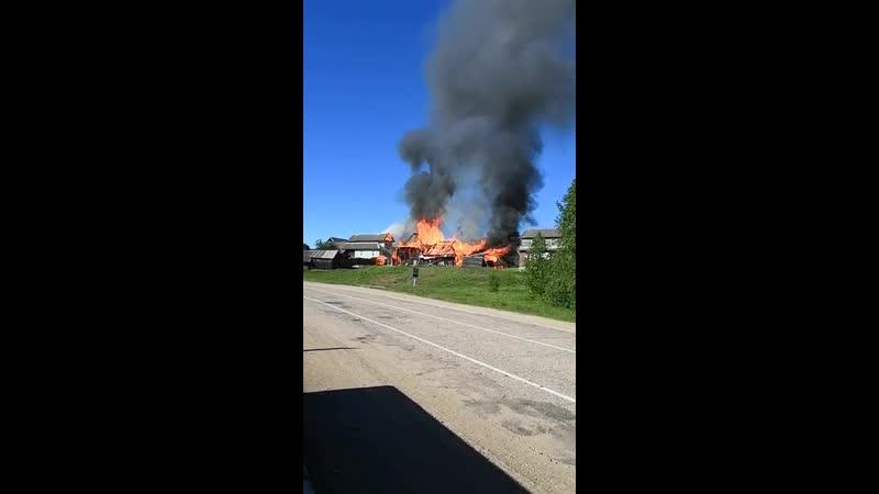 Пожар в Осташковском районе