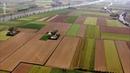 Planète d'eau - Pays-Bas : le pacte avec l'eau