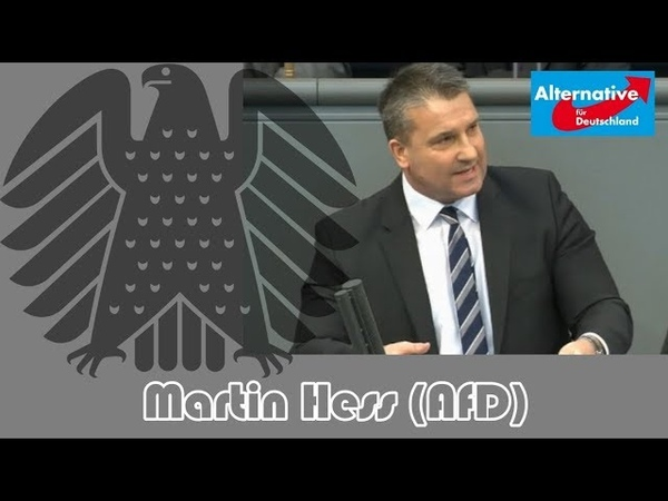 👍 Hammer Rede von Martin Hess (AfD) zum Thema Linksextremismus Das ist Linksterrorismus