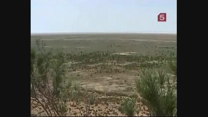 Море по колено - Аральское море