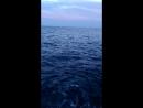 Вот такое оно Ионическое море (пляж Чиро-Марина (Италия))