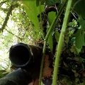Sniper Sochi Airsoft on Instagram New gilli for very hot weather. It is made of a strong grid and custom leaves. I made everything)))) Soon on vi...