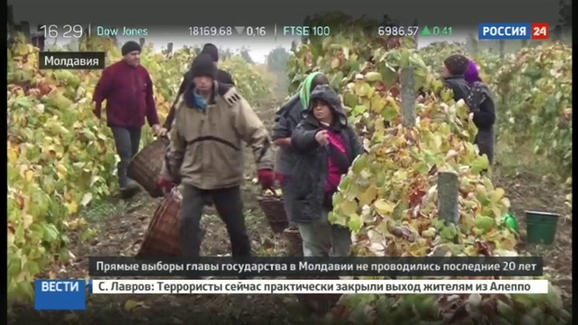 Новости на Россия 24 Выборы в Молдавии расклад сил симпатии избирателей и программы кандидатов