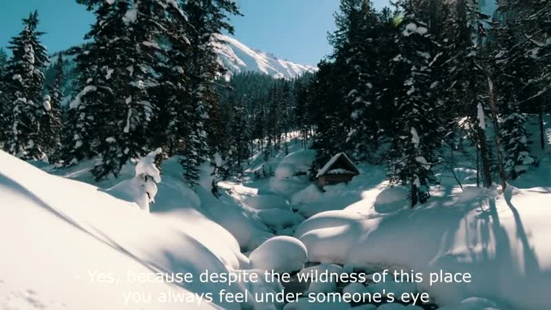 Добровольно в Сибирь