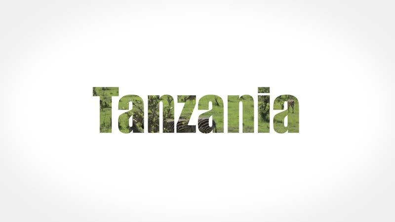 Танзания, Занзибар - эксклюзивное видео от Join UP!