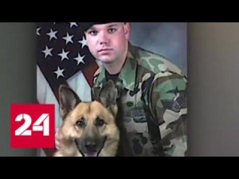 Чио Чио Сан уже не та японка зарезала американского военного Россия 24