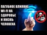 Пагубное влияние Wi-Fi на здоровье и жизнь человека.
