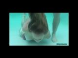 Tiffany Fox Bound Drown