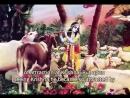 Уроки в Бхактиведанта Свами Гошала, ИСККОН Вриндаван.
