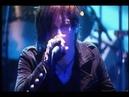 D'espairsRay - Yami ni furu kiseki