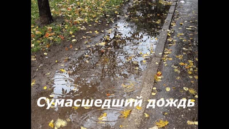 Вячеслав Добрынин Сумасшедший дождь