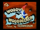 Woody Woodpecker Intro