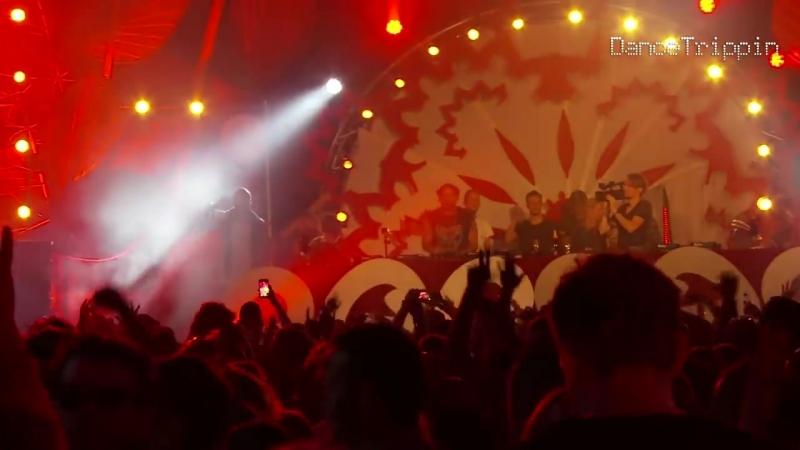 Mark Knight Pacha Festival DJ Set DanceTrippin