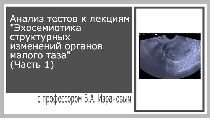 Анализ тестов к лекциям Эхосемиотика структурных изменений органов малого таза (Часть 1)