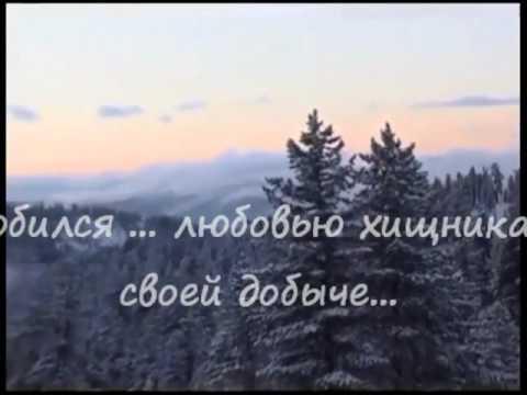 В.И.Адамовский Изгои земли сибирской