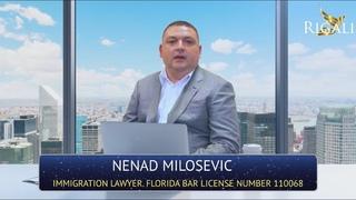 Nenad Milosevic – Иммиграционный адвокат ( Грин-карта виза гражданство)