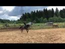 Конь и Аня