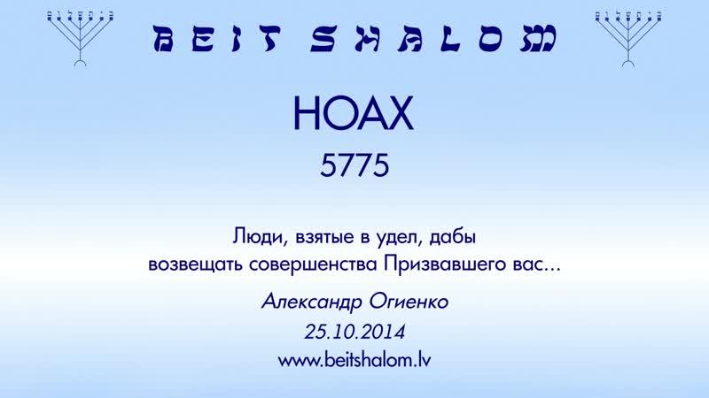 НОАХ 5775 Люди взятые в удел дабы возвещать совершенства А Огиенко 25 10 2014