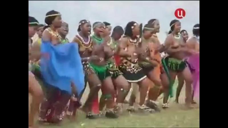 Королю Свазиленда наставили рога