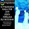 ВИПАССАНА ХОЖДЕНИЕ ДЗЕН   VIPASSANA WALKING ZEN