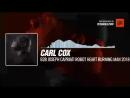 Carl Cox B2B Joseph Capriati - Robot Heart Burning Man 2018 Periscope Techno music