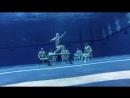 UGA Mens Swim Dive Harlem Shake [V/M]