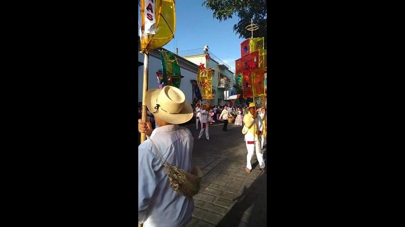 Desfile oaxaca