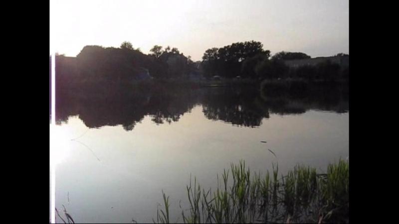 вечером у озера