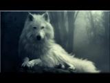Yeha Noha _ Sacred Spirit Native Song _ HD HQ