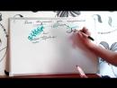 Урок биологии №4. Жизненный цикл папоротника.