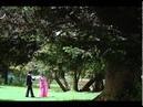 Santhana Kaatre Video Song Thanikattu Raja Movie Songs Rajinikanth Sridevi Ilayaraja