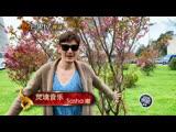 Китайская подделка Полины Гагариной. Вечерний Ургант
