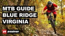Mountain Biking in Blue Ridge, Virginia - The Complete Guide Local Flavours