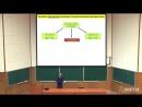 13. Регуляция экспрессии генов у эукариот (продолжение). Рак и канцерогенез