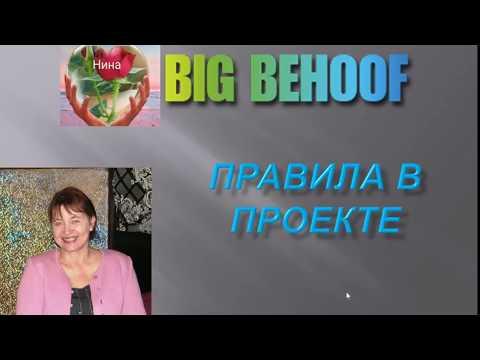 Проект BIG BEHOOF Правила в проекте