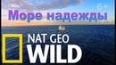 Nat Geo Wild: Море надежды. Подводные сокровища Америки / America's Underwater Treasures