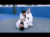 Renzo Gracie - Armlock from closed guard