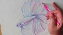 Как быстро и легко нарисовать рыбку цветными карандашами?