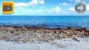 Шум Атлантического Океана. Расслабляющие Звуки Волн Для Глубокого Сна и Снятия Стресса