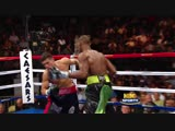 Serigio Martinez vs Paul Williams KO 2010