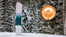 Salomon Pillow Talk Review: Women's All-Mountain Winner – Good Wood Snowboard Test 2018-2019
