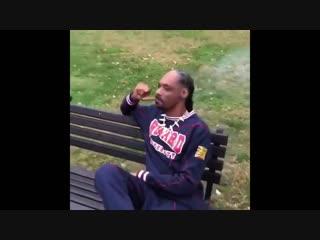 Snoop dogg курит блант возле белого дома [nr]
