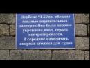 Дагестанская таможня