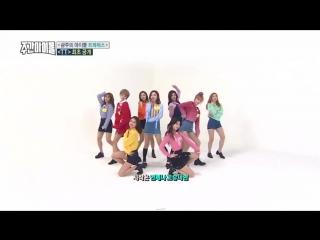 Twice 2X FASTER - Cheer Up, TT(not 2x), Signal, Likey [WEEKLY IDOL]