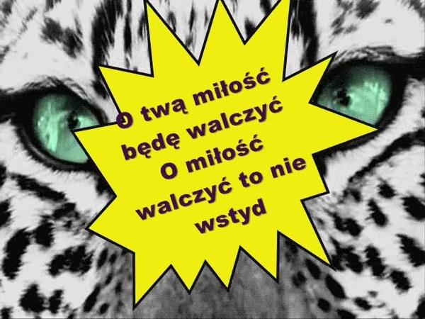 Przez twe oczy zielone Nadia Kubacka cover