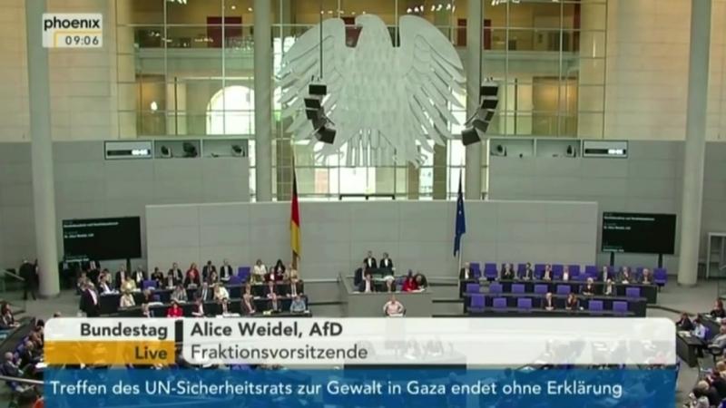 Политические Идиоты управляют Германией!