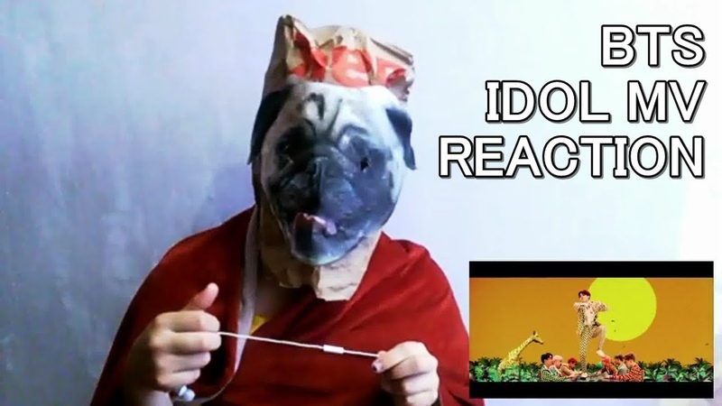 Mihoel Ent. BTS – IDOL MV REACTION (Dog's reaction!)