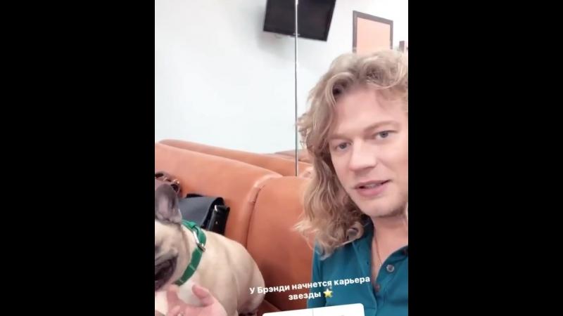 Бэкстейдж со съемок популярного на Первом канале шоу Видели Видео » Freewka.com - Смотреть онлайн в хорощем качестве
