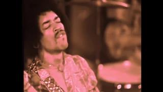 THE JIMI HENDRIX EXPERIENCE (LIVE 1969)