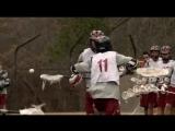 Teen Wolf Lacrosse